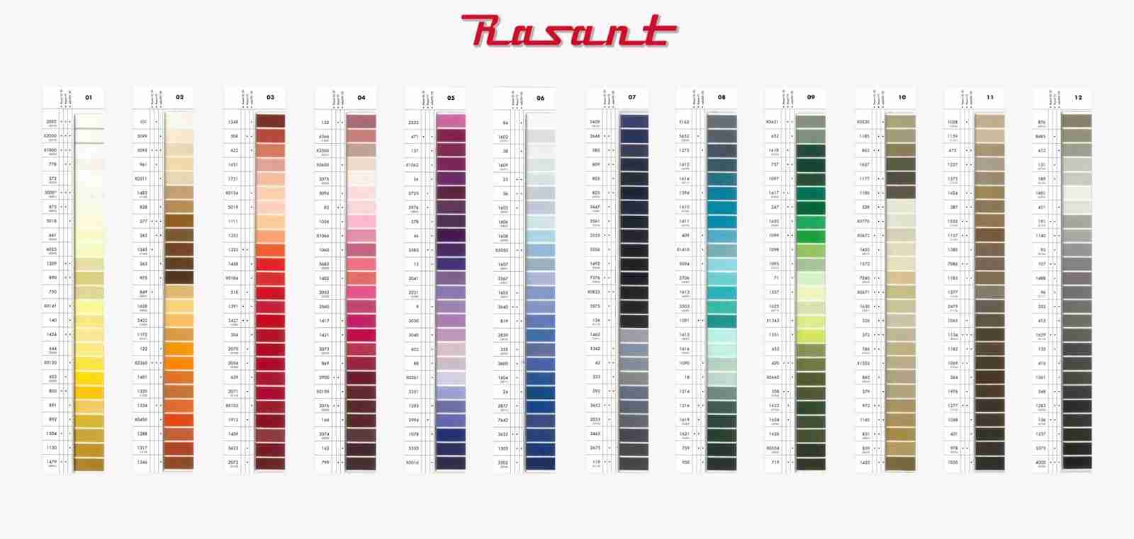Rasant quality sewing thread box 10 500 excl gst per reel home thread nvjuhfo Choice Image